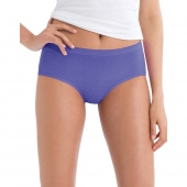 Hanes Womens No Ride Up Low Rise Cotton Brief 6-Pack