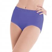Hanes Womens Nylon Brief Panties 6-Pack